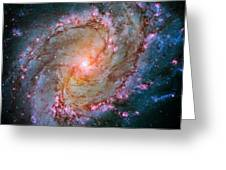 Southern Pinwheel Galaxy - Messier 83 -  Greeting Card