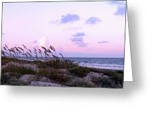Southern Shoreline Greeting Card