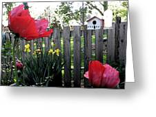 Southside Poppy Garden Greeting Card
