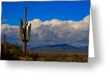 Southwest Saguaro Desert Landscape Greeting Card