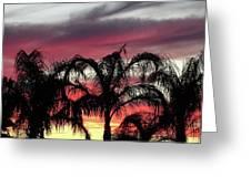 Southwest Sunset Greeting Card