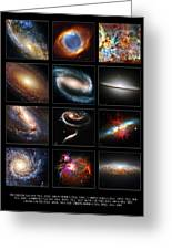 Space Beauties Greeting Card
