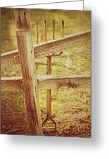 Spading Fork On Chicken Wire Fence Morning Sunlight Greeting Card