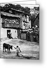 Spain: Bullfight Greeting Card