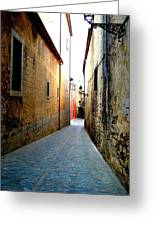 Spanish Alley Greeting Card