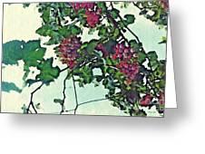Spanish Grapes Greeting Card