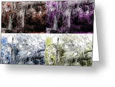 Spanish Moss Beauty Of Color Greeting Card