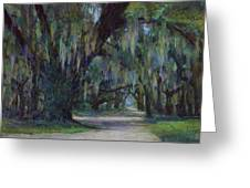 Spanish Moss Greeting Card by Billie Colson