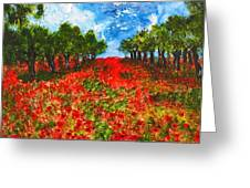 Spanish Poppies Greeting Card