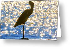 Sparkling Egret Greeting Card