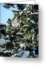 Sparkling Icicles  Greeting Card