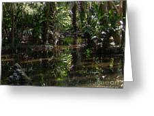 Sparkling Swamp Greeting Card