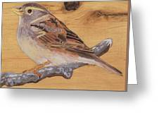 Sparrow 2 Greeting Card