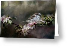 Sparrow In The Garden Greeting Card