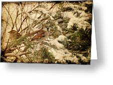 Sparrow In Winter Iv - Textured Greeting Card