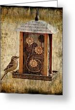 Sparrow On The Feeder Greeting Card