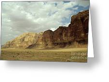 Sparse Tussock And Rock Formations In The Wadi Rum Desert Greeting Card