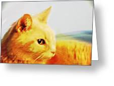 Special And Purfect Greeting Card