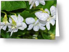 Speckled Flowers Greeting Card
