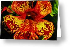 Speckled Petunia Greeting Card