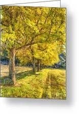 Spectacular  Fall Foliage Pencil  Greeting Card