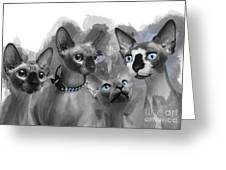 Sphynx Group No 02 Greeting Card