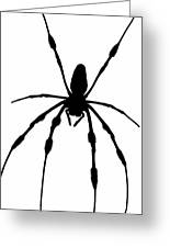 Spider Card Greeting Card