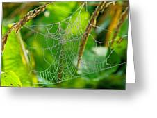 Spider Web Artwork Greeting Card