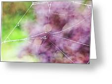 Spiderweb In The Mist Greeting Card