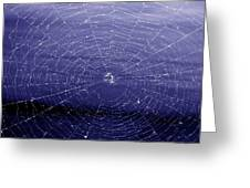 Spiderweb Greeting Card