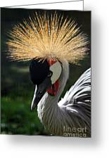Spiked Crane Greeting Card