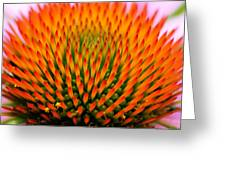 Spikey Design Greeting Card