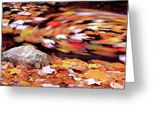 Spinning Leaves Of Autumn Greeting Card