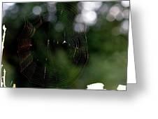 Spinning My Web Greeting Card