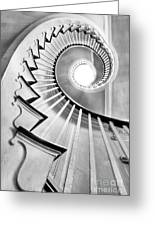 Spiral Staircase Lowndes Grove  Greeting Card