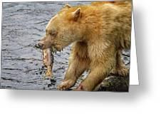 Spirit Bear Take Out  9636 Greeting Card