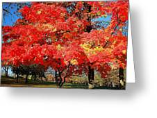 Spirit Of Fall Greeting Card