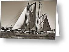 Spirit Of South Carolina Schooner Sailboat Sepia Toned Greeting Card by Dustin K Ryan