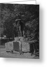 Spirit Of The Confederacy Black And White Greeting Card