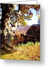 Spirits In View Greeting Card