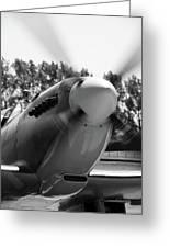 Spitfire Nose Greeting Card
