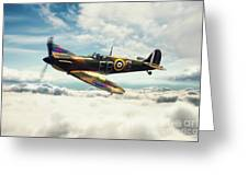 Spitfire P7350 Greeting Card