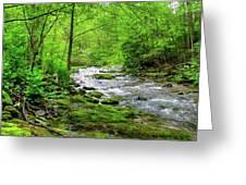 Spivey Creek Greeting Card