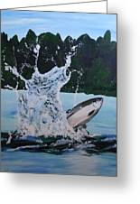 Splash Catch Greeting Card