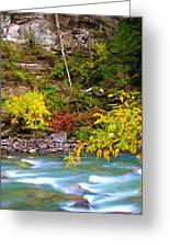 Splash Of Color Along The Creek Greeting Card