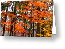 Splashes Of Autumn Greeting Card