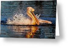 Splashing Fun Greeting Card