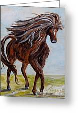 Splashing The Light - A Young Horse Greeting Card