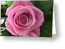 Splendid Rose Greeting Card