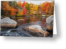 Splendor Of Fall Greeting Card